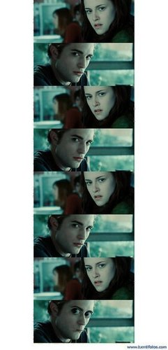 twilight saga photos!