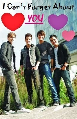 Big Time Rush wolpeyper containing a meteorological balloon titled Big Time Valentine <3