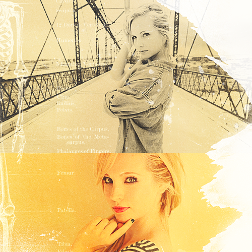 Candice Accola wallpaper possibly with a portrait titled Candice Accola