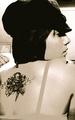 Christina's back tattoo - christina-perri photo