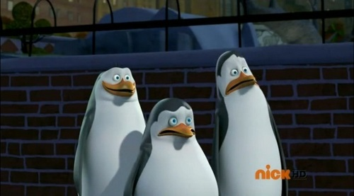 Creeped Out, Except Rico - penguins-of-madagascar Photo