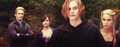 Cullen's - the-cullens fan art