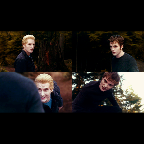 The Cullens wallpaper titled Cullen's
