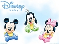 Walt disney wallpaper - disney bayi