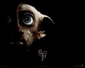 Dobby - dobby-the-house-elf wallpaper