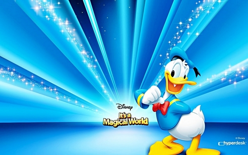 Walt disney wallpaper - Donald bebek