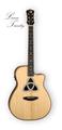Emily's gitar