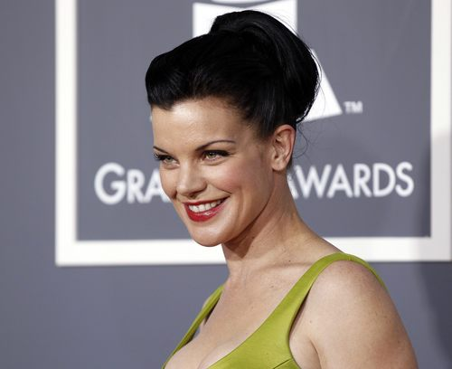 pauley perrette wallpaper with a portrait called Grammy