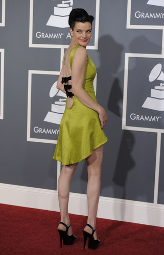 Pauley Perrette wallpaper probably containing a playsuit, a chemise, and a dress entitled Grammy