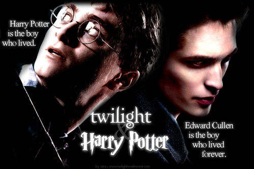 Harry Potter Vs. Twilight wallpaper containing a portrait entitled Harry Potter vs Twilight