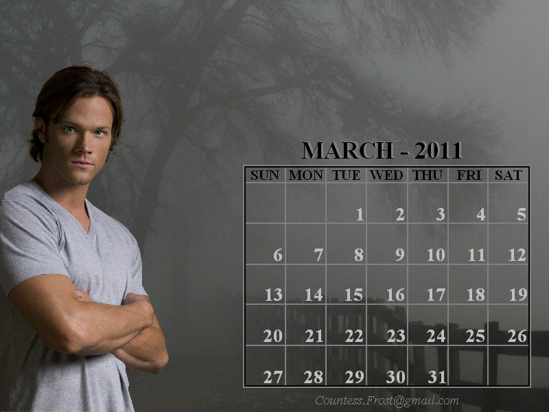 monthly calendar march 2011. house Monthly Wallpaper: March