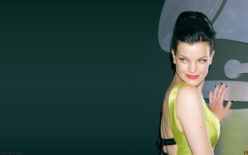 NCIS - Unità anticrimine - Unità anticrimine wallpaper probably containing a portrait titled Pauley Perrette (Abby) wallpaper