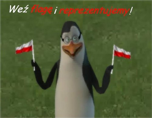 Polish Indeed =D  - penguins-of-madagascar Photo