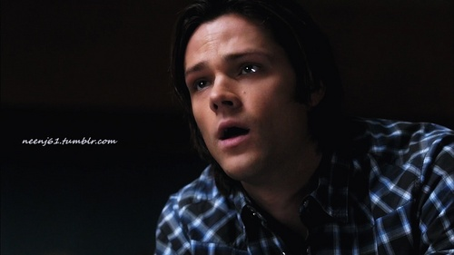 Sam Winchester wallpaper possibly with a portrait called Sam