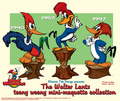 The Woody Woodpecker Three! - woody-woodpecker photo