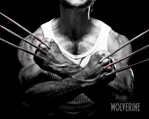 Hugh Jackman as Wolverine kertas dinding probably containing a trombon titled Wolverine