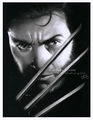 Wolverine - hugh-jackman-as-wolverine fan art