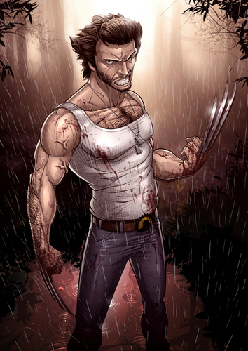 Hugh Jackman as Wolverine wolpeyper possibly containing a hip boot, a sign, and a tabard titled Wolverine