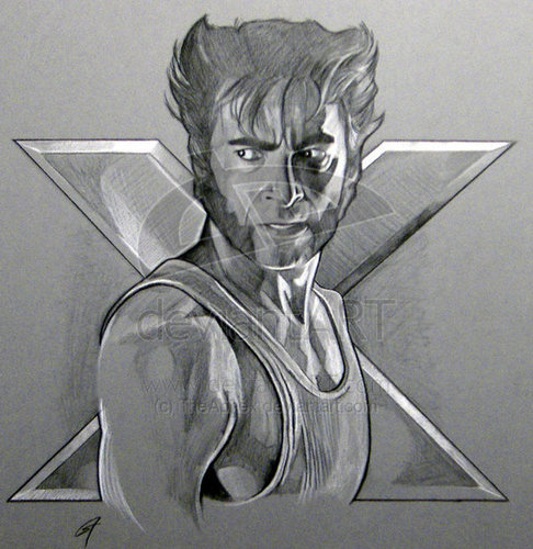 Hugh Jackman as Wolverine वॉलपेपर containing a cleaver entitled Wolverine