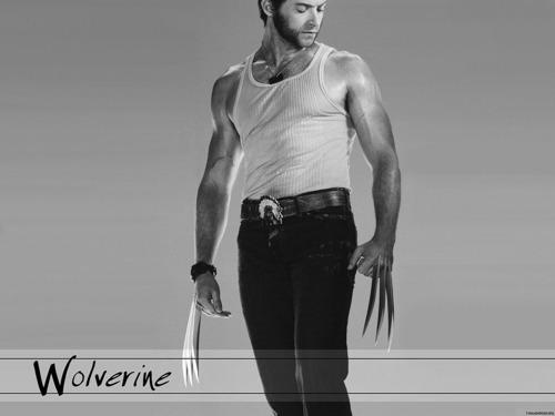 X-men THE MOVIE wallpaper titled Wolverine