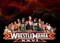 Wrestlemania 26 - wrestlemania photo