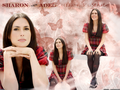sharon den adel (within temptation) - female-lead-singers wallpaper