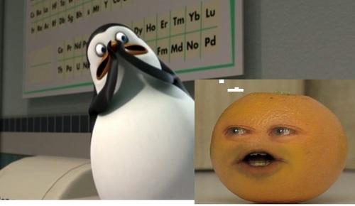 the annoying नारंगी, ऑरेंज