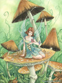 Among the mushrooms - fairies photo