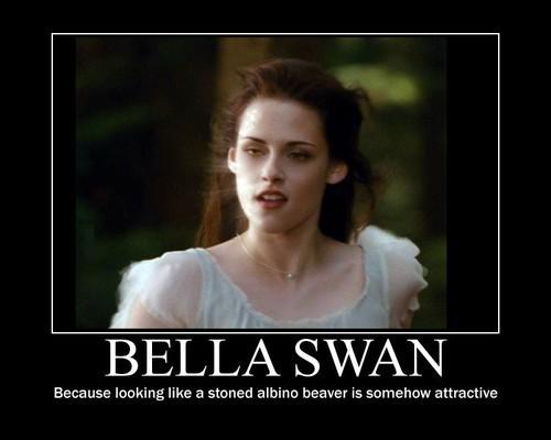 Bella سوان, ہنس