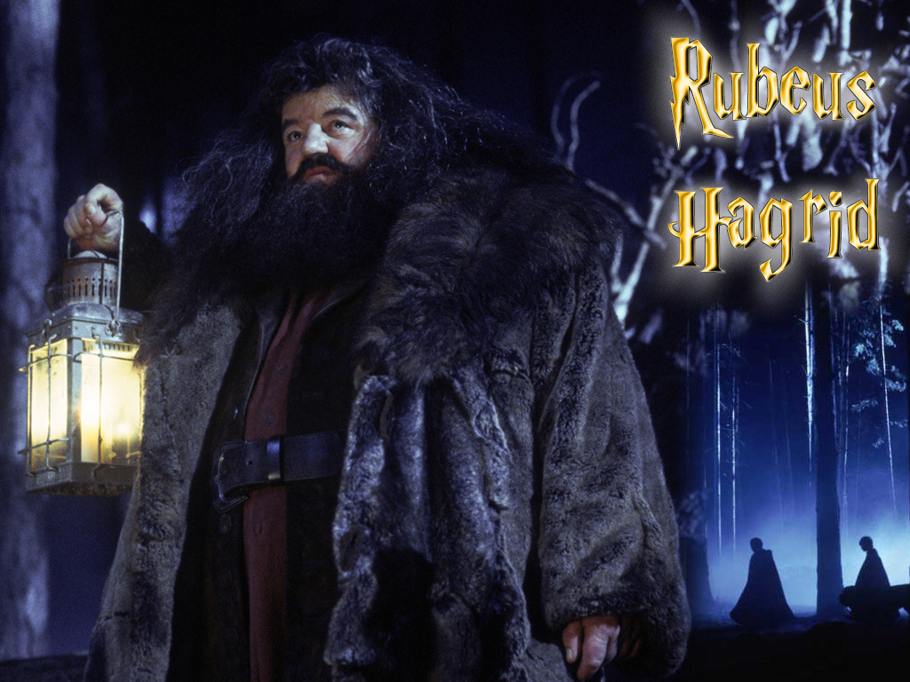 Rubeus Hagrid images Hagrid HD wallpaper and background photos ...