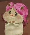 Milo's favorite hamster girl