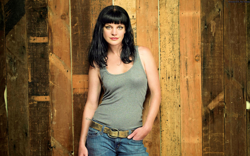 NCIS wallpaper titled Pauley Perrette Wallpaper