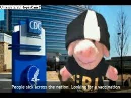 Putnam Pig Rap Stills