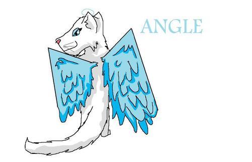 Sassy as an angle