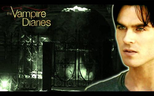 Vampires wallpaper with a sign entitled The Vampire Diaries