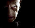 Voldemort - lord-voldemort wallpaper
