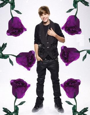 justin purple rose