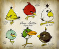 Angry birds illo