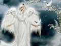 Beautiful Angel - angels wallpaper