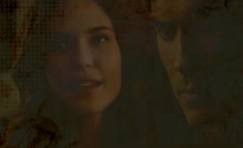 Vampire Diaries Books wallpaper called Damon/Meredith