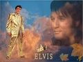 Elvis  The King - elvis-presley wallpaper