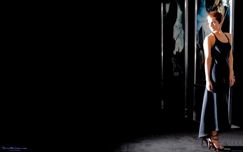 Emma Watson (NYC HP7) fond d'écran