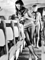 Flight attendants in the 1960s - the-60s photo