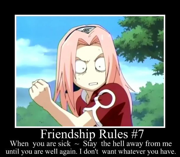 Friendship  Rules #7