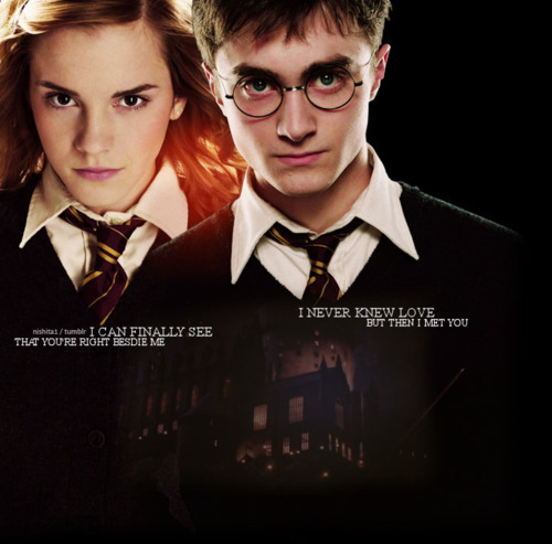 harry and hermione dating fanfic