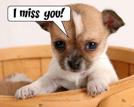 I Miss bạn Sunny !