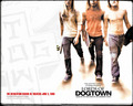 Jay, Stacy & Tony - lords-of-dogtown wallpaper
