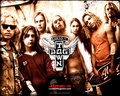 Lords of Dogtown Wallpaper