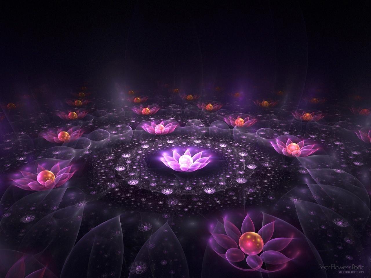 ファンタジー 画像 lotus of light hd 壁紙 and background 写真 19521541