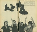 Monkees & shoes - the-monkees photo